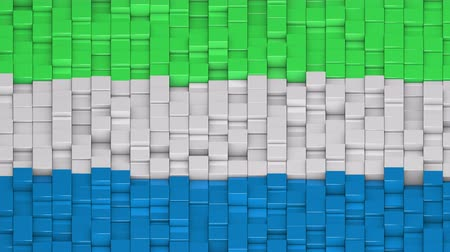 sierra leone flag : Sierra Leonean flag made of cubes moving up and down in a random pattern. 3D animated motion background loop.