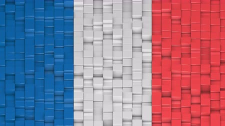 bobbing : French flag made of cubes moving up and down in a random pattern. 3D animated motion background loop.