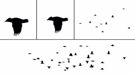 "voar : A realistic flock of birds to use in your project. There are several options here. Just mask out the sections you don't need, and use the ""darken� compositing mode to place the bird silhouettes over your footage (without the white). Then, just anima"