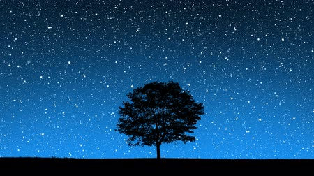 shluk : As the world rotates, the universe appears to spin behind the silhouette of a tree in the middle of a field. The stars were all painted in Photoshop.
