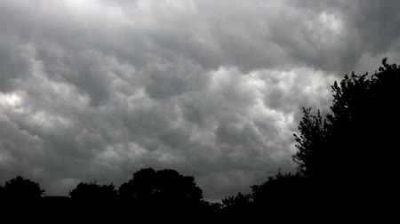 árvores : Time lapse of storm clouds forming