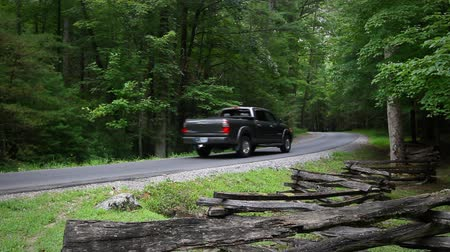 wilderness : A pickup truck driving on a scenic forest road in the Smokey Mountains