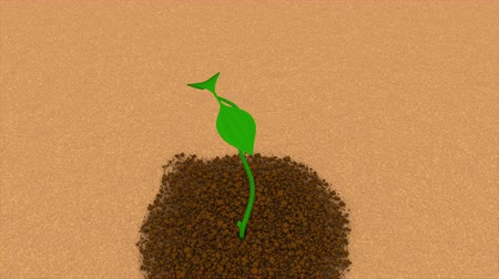 step : Green sprout appears from the soil and grows with new leaves 3d rendering background, ecological creative