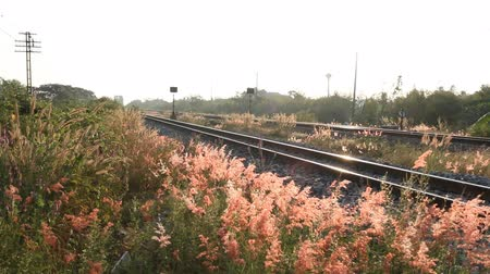 sararmış : beautiful view on railroad in morning
