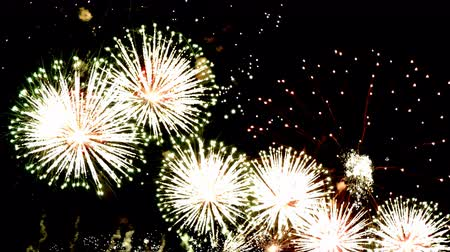 to celebrate : Fireworks display celebration, Colorful Firework 4K with sound audio
