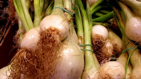 shallot : Well cropped spring onions for additional seasoning of your favorite foods like roasted chicken and roasted pig.