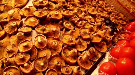 shiitake : Marketed pile of mushrooms freshly displayed. Mushroom is really good for you for it is rich in vitamin D; iron and protein.