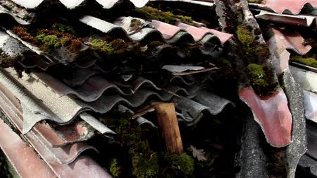 architectural protection : Many rusty old roof slate abandoned on the ground
