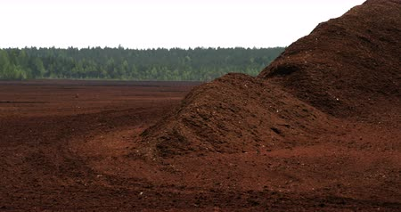 briquette : Big heaps of red peat soil with lots of trees behind 4K FS700 Odyssey 7Q Stock Footage