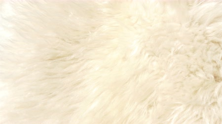 koyun : A lambskin or fur that is white in color. It is also called a sheepskin that used for furry clothes or accesories 4K UHD