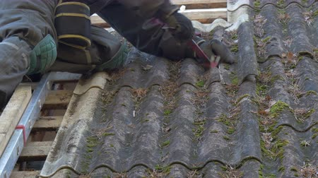 tető : A roofer is getting off the nails from the roof plate. One of the roof plate is broken and has lots of grass and moss