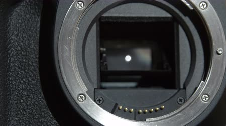 camera operator : Camera lens holder where lens is attached. It is a dlsr camera for professional photographer