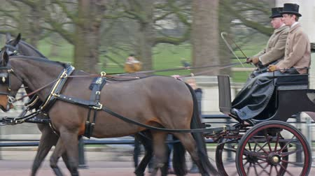 realeza : A royal horse carriage. The brown horse is with the two palace guards in 4K UHD
