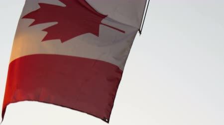 kanada : The flag of Canada waving on the pole sideways. in 4K UHD