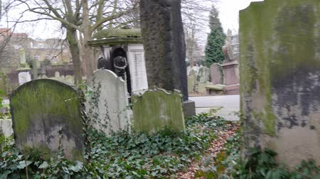 walkthrough : Walkthrough along the cemetery in London. This footage is taken inside the cemetery