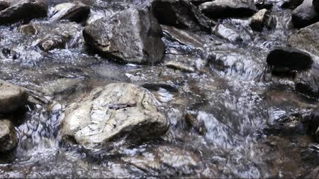 stagnant : Mountain stream on Valley