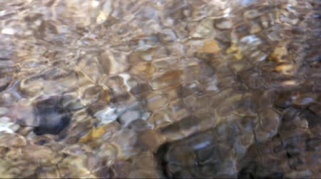 tripping : Mountain stream on the valley
