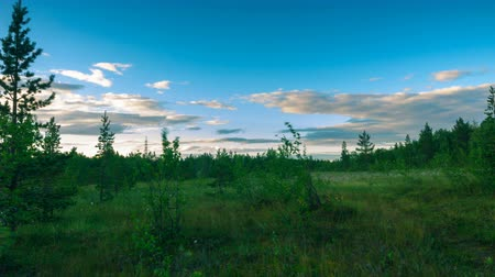 liken : Beautiful Northern nature at sunset in summer.Time lapse