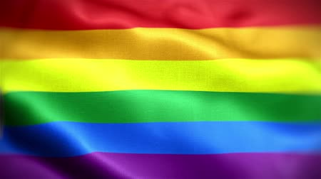 igual : Realistic rainbow flag waving in the wind footage video backgrounnd