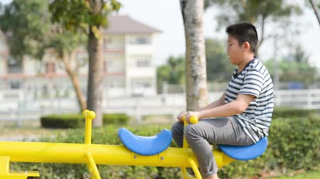 boyhood : Happy boy playing seesaw outdoor, lifestyle concept Stock Footage