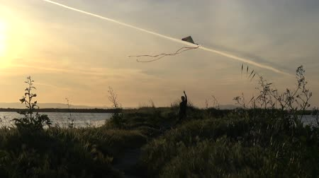 Slow motion silhouette of boy running with kite at sunset Stok Video