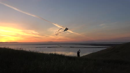 Silhouette of boy flying kite at sunset slow motion HD Stok Video