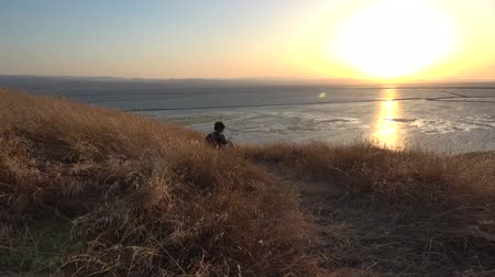 natura : Boy reading book outside at sunset Wideo