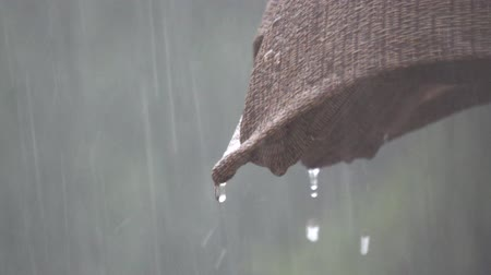 Dripping raindrops in slow motion Stok Video