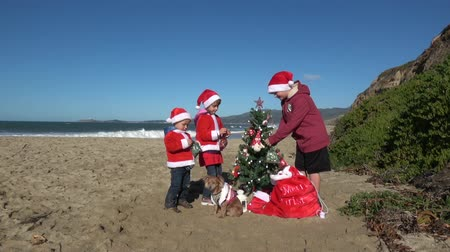 Christmas at the beach 影像素材