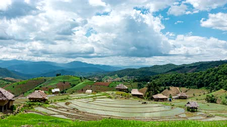 yansıyan : Time lapse, Clouds moving over the rice terrace fields reflected in the water at Pa Bong Piang village Chiang mai, thailand. Camera zoom out, video 4k Stok Video