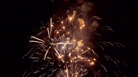 Festive salute in the night sky. Explosions of fireworks. Wideo