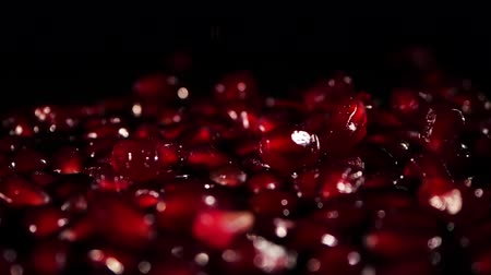 roma : Pomegranate seeds slowly fall to the surface.