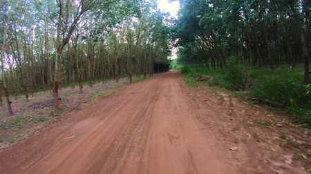 Video footage  front view. Ride a bike on a country road . Mountain biking .