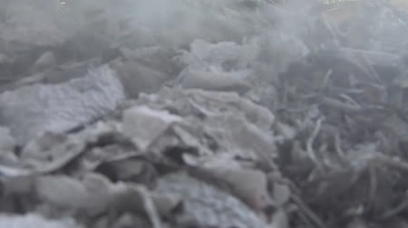 video footage ,Burning garbage and smoke. Strong wind rises toxic smoke of burning garbage into the air and spreads.