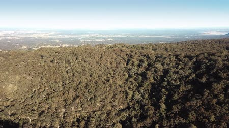 richmond park : Forested ridge of gum trees at Kurrajong overlooking Grose Vale, west of Sydney, Australia