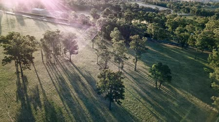 richmond : Long shadows and lens flare from drone footage of a sunset over fields and gum trees on a farm in New South Wales Australia