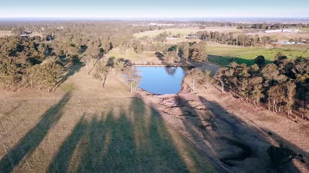 windsor : Dried up water course, long shadows and gum trees by a dam in the bush, Australia. Stock Footage