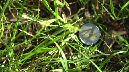 skarb : Business concept, Two euro coin and 50 cents i motion, grass on background Wideo