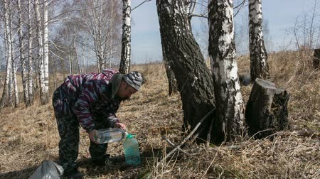 береза : man in the wood gathers birch sap