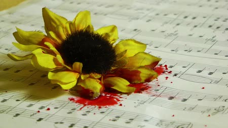vetor : Blood Drops on the Yellow Flowers and Music Notes Stock Footage