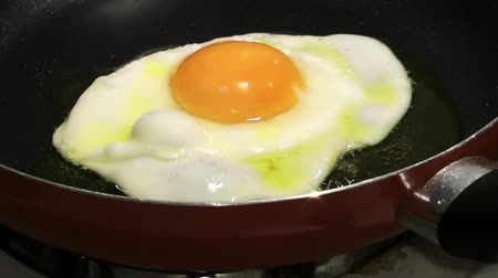 ovo : Cooking Egg