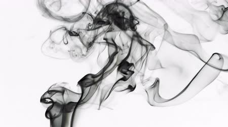 incenso : Abstract Smoke Element