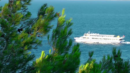 ferryboat : Ferryboat is passing and nature