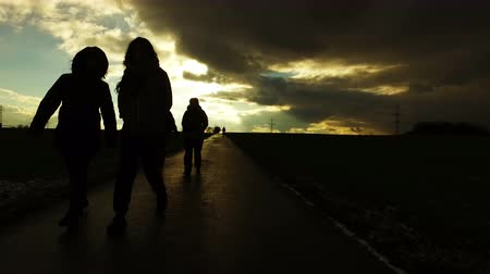 lastik : People silhouette on road in field