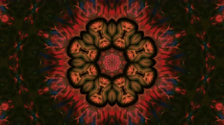 ink flower : Abstract Paint Brush Ink Explode Spread Smooth Concept Symmetric Pattern Ornamental Decorative Kaleidoscope Movement Geometric Circle and Star ShapesAbstract Paint Brush Ink Explode Spread Smooth Concept Symmetric Pattern Ornamental Decorative Kaleidoscop