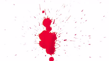 stain : Red Blood Spread on White Background Stock Footage