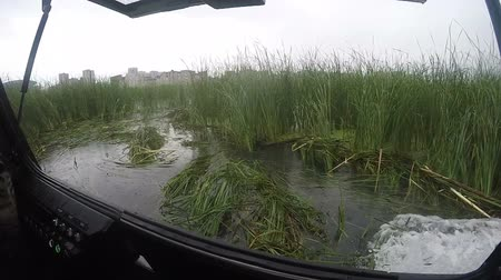 hajózik : slow motion view from modern hovercraft sailing on a large lake with green reeds against city and gray sky