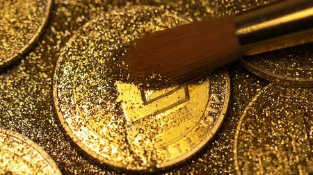 wallet : macro fur brush cleans golden litecoin made as currency protected by unique cryptographic key from sparkles