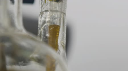 pipette : macro special glass tube put in clear bulb takes yellow raw oil sample in modern plant laboratory