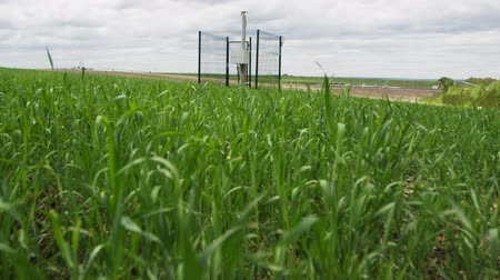 field measurements : view from close fresh green grass on field to modern powerful seismological station against sky